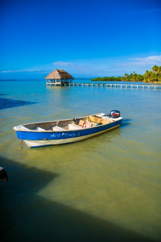Daily Commute