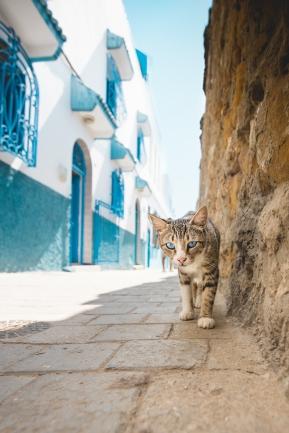 Morocco-1